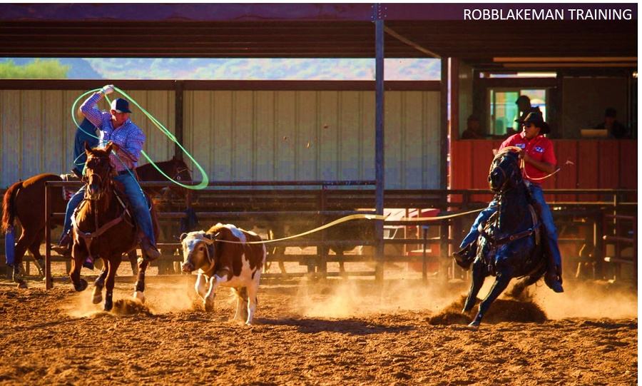 Team Roping Rules